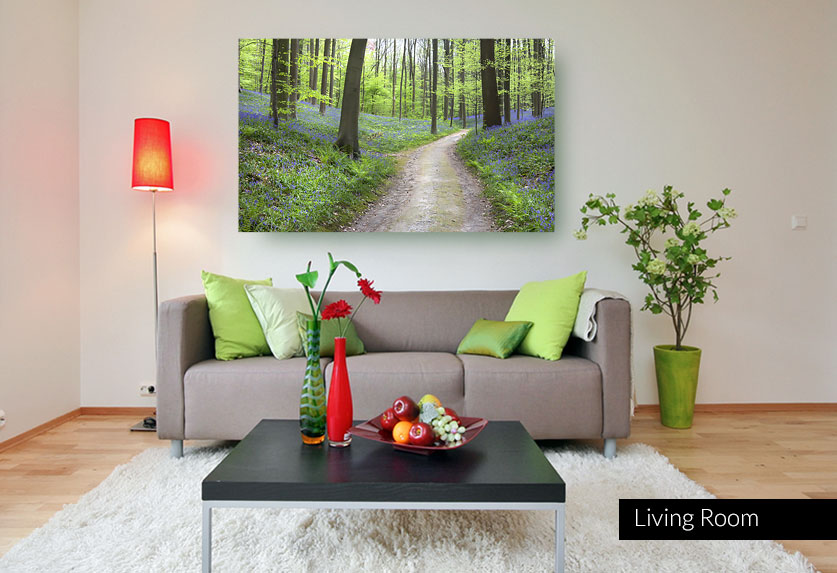 Landscape wall art - Photo of a path through beautiful forest with wildflowers