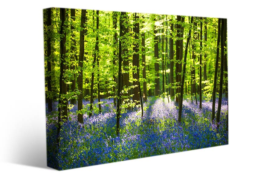 landscape wall art forest flowers spring
