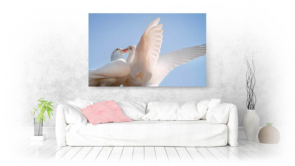 bird canvas prints wall art