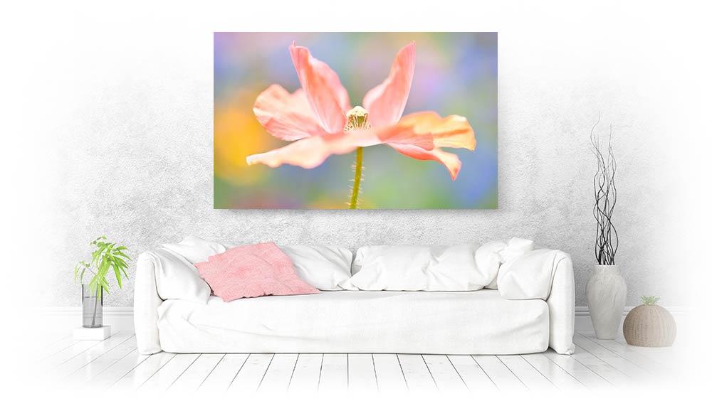 flower canvas prints