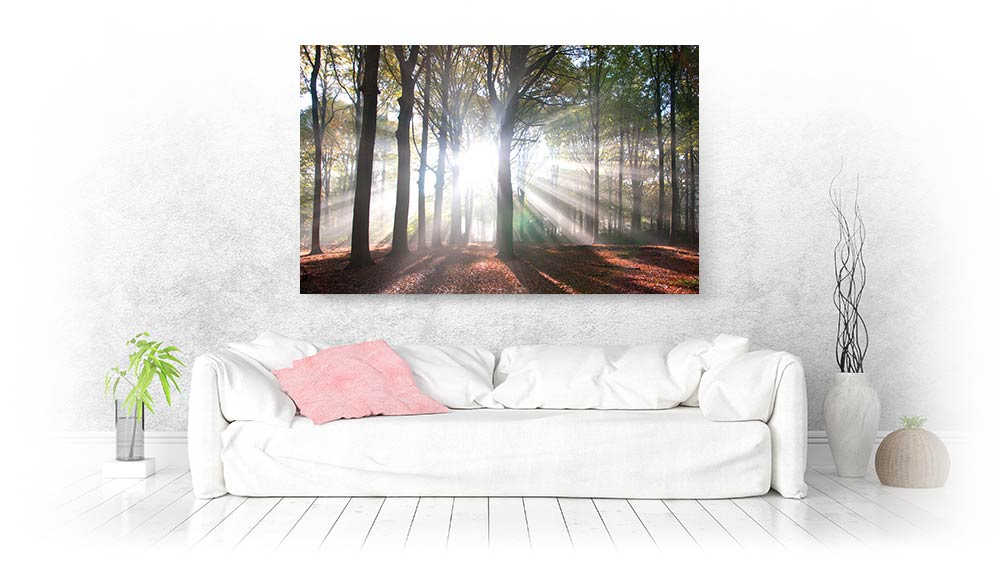Landscape wall art and canvas prints