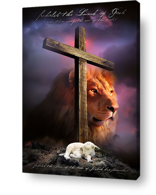 Image result for the lamb slain and lion of judah pics