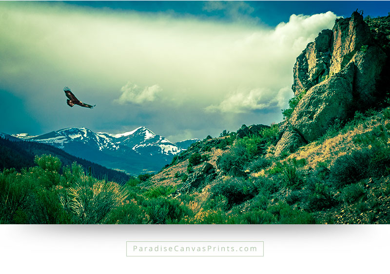 living room wall art home wall decor mountains eagle