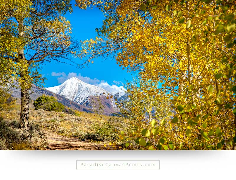 Living room wall art and home wall decor - Mountains with snow and colorful aspen trees