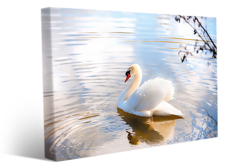 living room wall art swan romantic