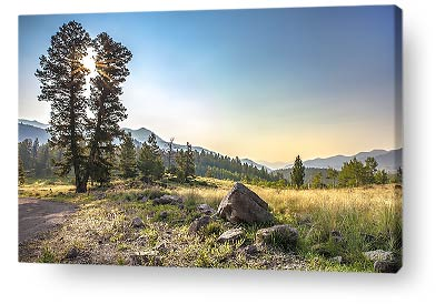 colorado wall art home - mountains and trees