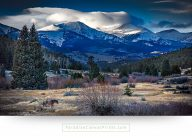 colorado wall art horse majestic mountains