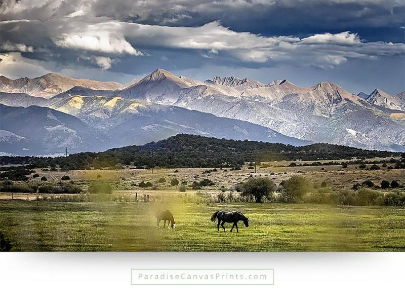 horse wall art on canvas print - Black Ranch Horse With Dramatic Clouds and Mountains
