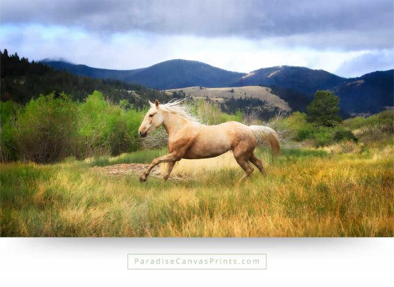 horse wall art canvas print wild mustang mountains running
